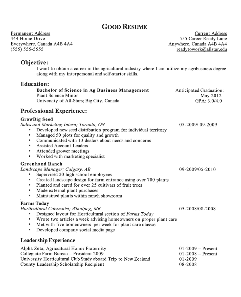 resume template sensational how to make good res using word for internship in india 8 - How To Make A High School Resume