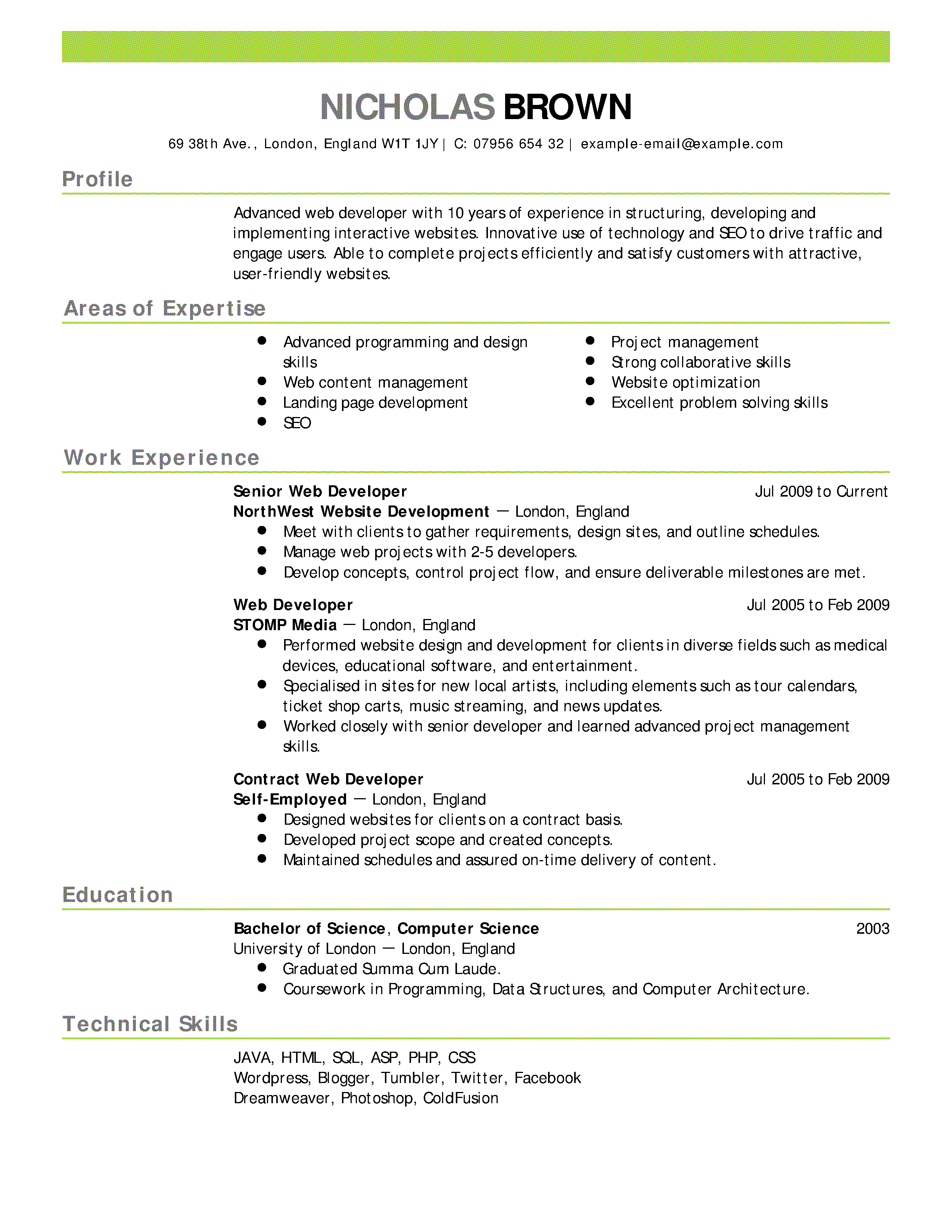 Professional Resume Sample #1